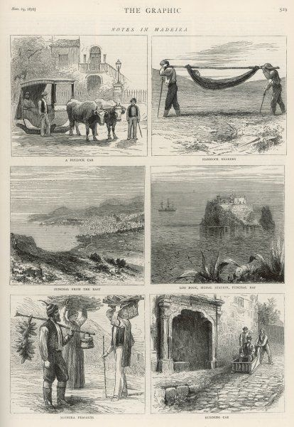 A series of 6 sketches showing life in Madeira, including a bullock car, hammock bearers, Funchal, Loo Rock, Madeira peasants and a running car