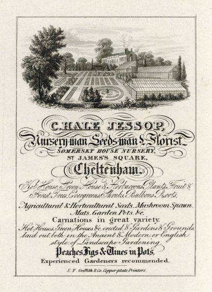 The trade card of C Hale Jessop, Nurseryman, Seedsman and Florist, of Cheltenham, Gloucestershire, England, showing a garden layout