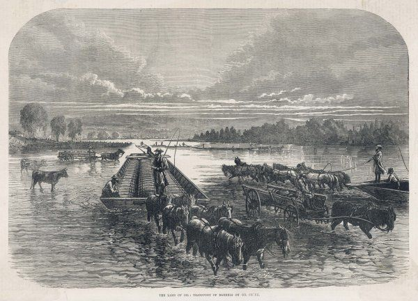 Horses transport oil in barrels on an oil creek by pulling the carts through the water
