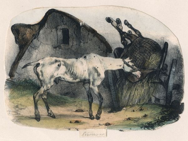 An old horse watches its companion being carried away to the knacker's yard... Date: circa 1840