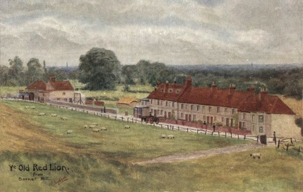 A view from Barnet Hill, North London (Hertfordshire) of the Old Red Lion inn (left) and a row of cottages. The cottages are said to have formerly housed an 'infant workhouse' operated by the London parish of St Andrew's, Holborn