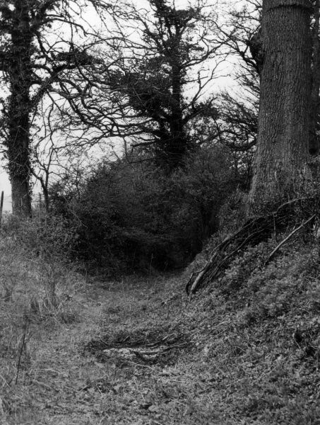 A section of the Roman road at Datchworth Green, Hertfordshire, England, which points to the ford at Ayot St. Lawrence. Date: 1930s