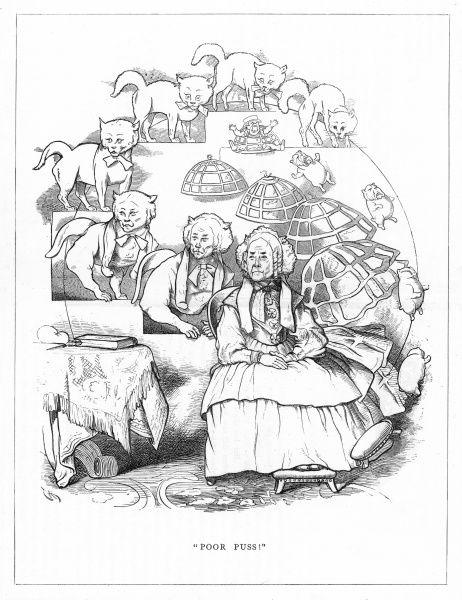 'Poor puss'. Satire on Darwin's 'Origin of Species' showing the evolution of a crinoline wearing old maid from a cat