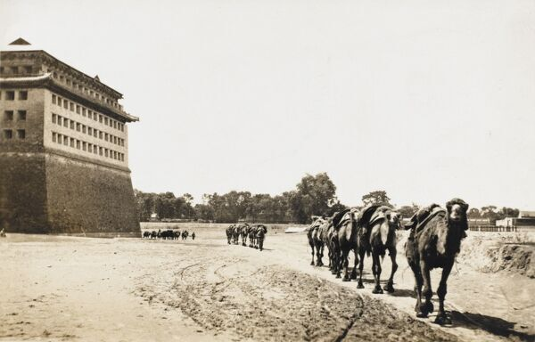 The Outer City Wall of Beijing, China, with a carmel caravan train heading off across the Gobi Desert from the Chinese Capital