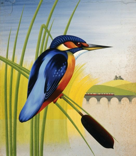 Painting of a colourful kingfisher sitting by a river