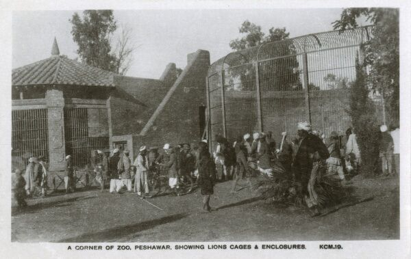 The Lions cages and enclosures at the Peshawar Zoo, now in Pakistan, formerly the North West Frontier Province of Northern India on the border with Afghanistan