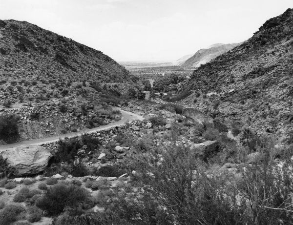 A view from Palm Canyon, in the Ague Caliente Indian Reservation, California, U.S,A, Date: 1960s