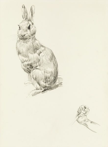 Pencil studies of a rabbit and grasping fist by Raymond Sheppard