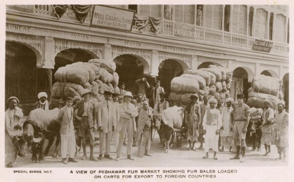 Peshawar Fur Market - with bales loaded on carts all ready for foreign export. Date: 1910s