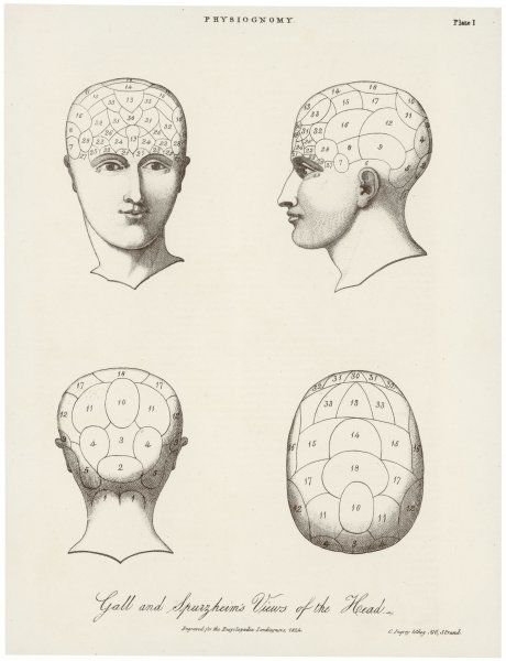 The phrenological systems of Gall and Spurzheim