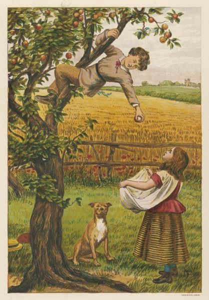 A boy hangs precariously from the tree and throws apples down to the girl waiting below with their dog