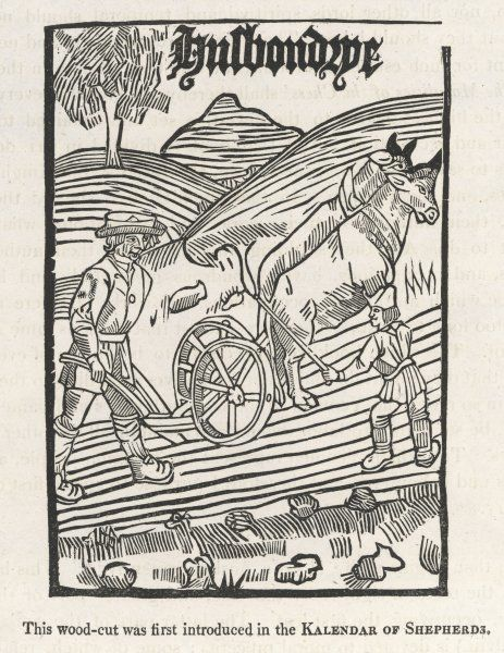 A 16th century plowman plods behind a pair of oxen who are urged on by his companion - illustration to Richard Pynson's 'Boke of Husbandrie&#39