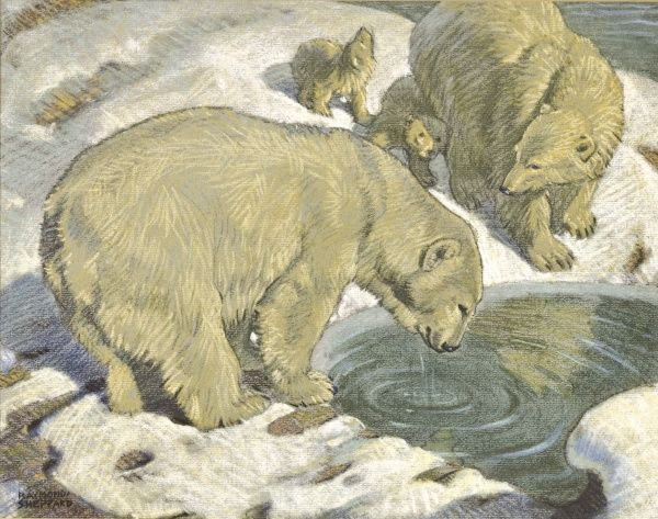Polar Bear and Cubs drink from a pool between ice-clad rocks. Pastel drawing by Raymond Sheppard