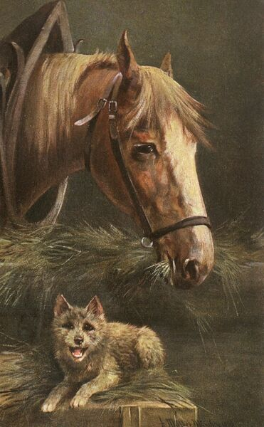 Portrait of a Horse and a young dog Date: 1905