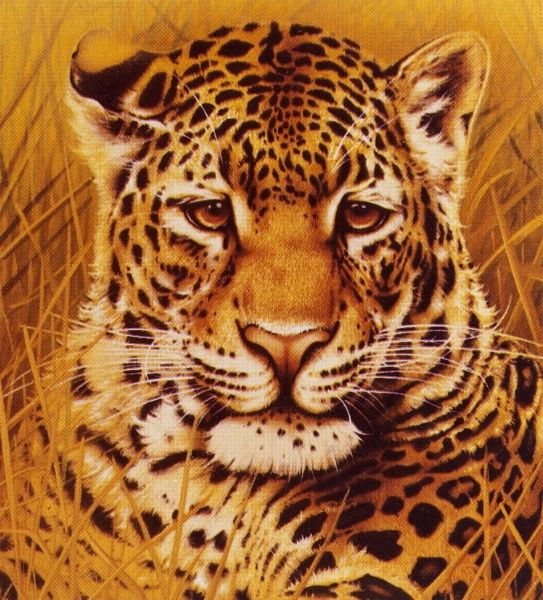 A reproduction of a portrait painting of a Leopard (Panthera pardus) by Malcolm Greensmith