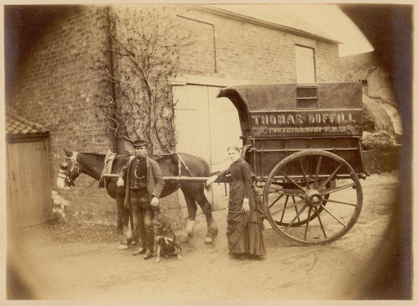 Here is Yorkshire poulterer and rabbit dealer Thomas Duffill and his good lady, their dog and their horse- drawn cart : his costume is specially noteworthy