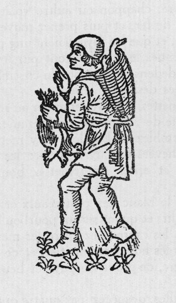 a poultry seller