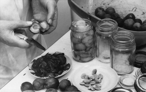 If it is not necessary to preserve whole plums, it takes up less space in the jar if they are cut and stoned first