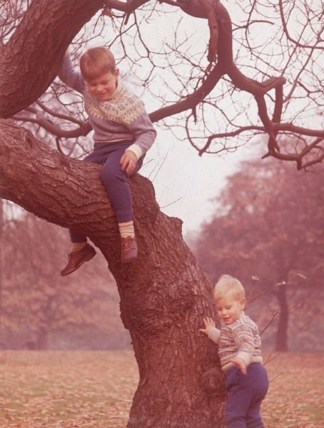 Prince Andrew (Duke of York) aged six and Prince Edward (Earl of Wessex) aged two, playing in a tree