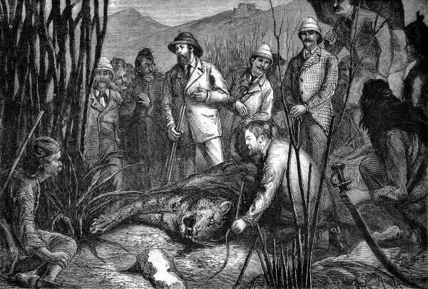 Engraving showing the Prince of Wales, later Edward VII, standing by the first tiger he had shot, during his tour of India. Surrounding him are a number of trackers