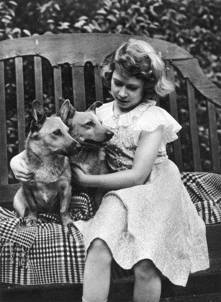 Princess Elizabeth of York (now Queen Elizabeth II) taken at the York's London residence, 145, Piccadilly in 1936 with two of her corgis