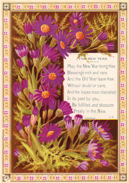 purple daisies on a new year card