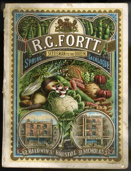 The colourful front cover of R G Fortt's spring gardening catalogue