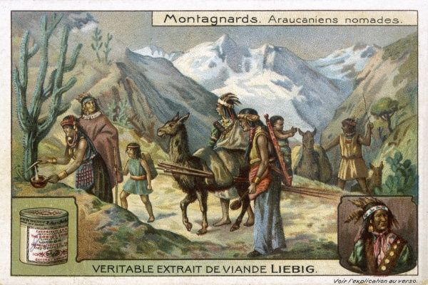 A group of Araucanian nomads on their travels in the mountains