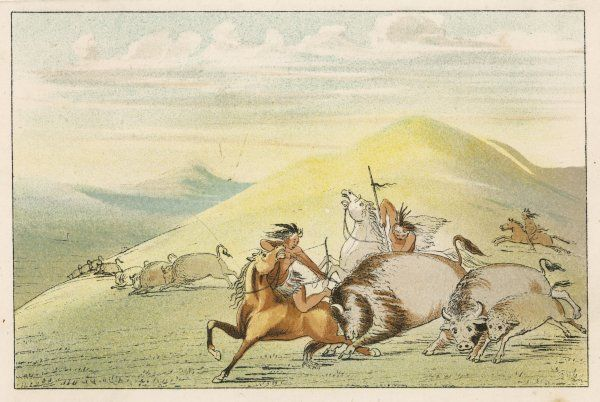Sioux hunting buffalo with bows and arrows and with spears
