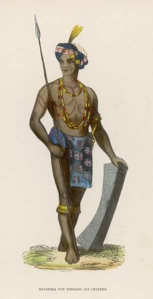A Celebes islander with spear and shield