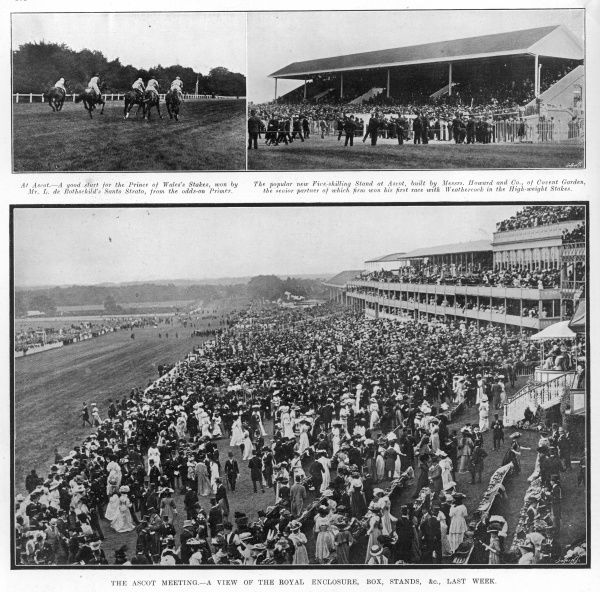 A view of the royal enclosure, box and stands at Ascot, also showing Santo Strato winning the Prince of Wales's Stakes