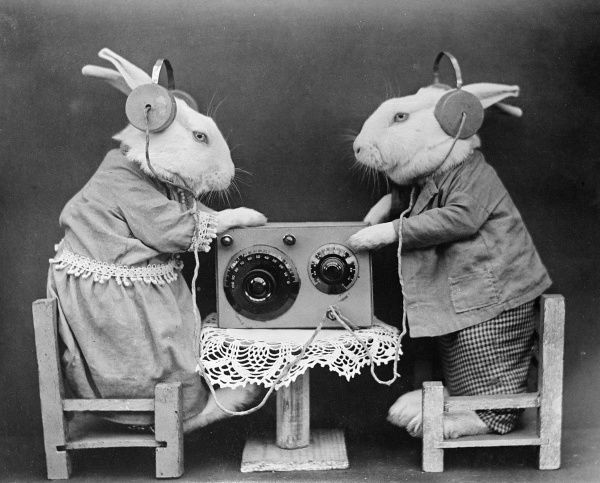 Two rabbits wearing headphones, tuning into a radio station. Date: early 1930s