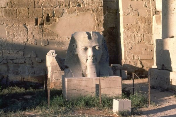 RAMESES II (THE GREAT) surviving carved head at the Luxor Temple site