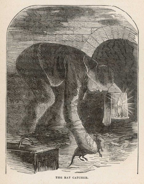 A ratcatcher at work in the sewers of London