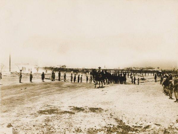 Official photograph of remount depot on the Egyptian coast picturing the mobbing of the mules during World War I