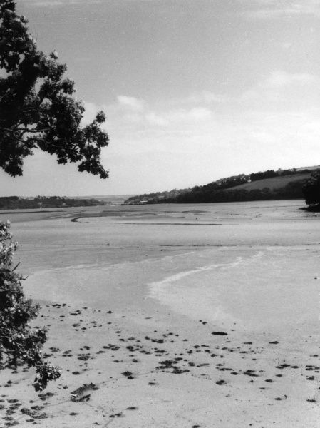 A low-tide view of Restronguet Creek, in the Falmouth Estuary, Cornwall, England, seen here from Devoran. Date: 1960s