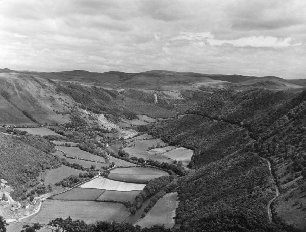 A fine impression of the lovely Rheidol Valley, Wales. The famous Vale of Rheidol Railway line can be seen on the right of the photograph. Date: September 1963