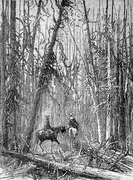 Engraving showing a pair of cowboys on horseback, riding through a burnt forest, Yellowstone Park, USA, 1888. In March 1872 President Grant made Yellowstone a National Park, '...for the benefit and enjoyment of the people.&#39