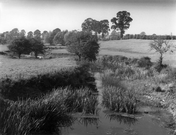 A view of the River Avon, seen under summer drought conditions, from the Roman Road, the Fosse Way, bewteen Princethorpe and Wappenbury, Warwickshire, England. Date: early 1960s