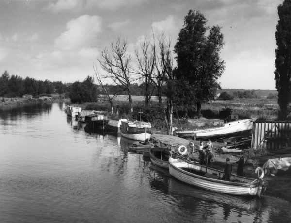 Boats moored on the banks of the River Lea, at Broxbourne, Hertfordshire, England. Date: 1950s