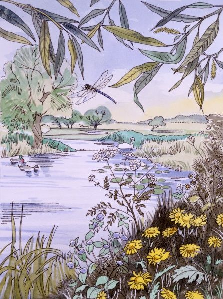 A view looking down the bend of an English river, with lily pads, a dragonfly, celandines and rushes. Painting by Malcolm Greensmith