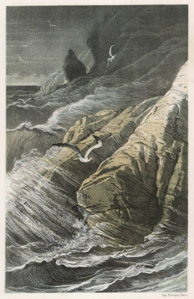 Sea-birds soar above the storm-waves as they break on a rocky coast