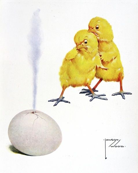 Illustration by Lawson Wood, showing two Easter chicks holding their beaks by a rotten egg