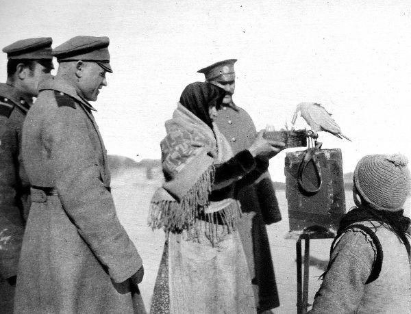 Russian soldiers seeking to know the future: A Gispy's parakeet telling the men's fortunes at the front