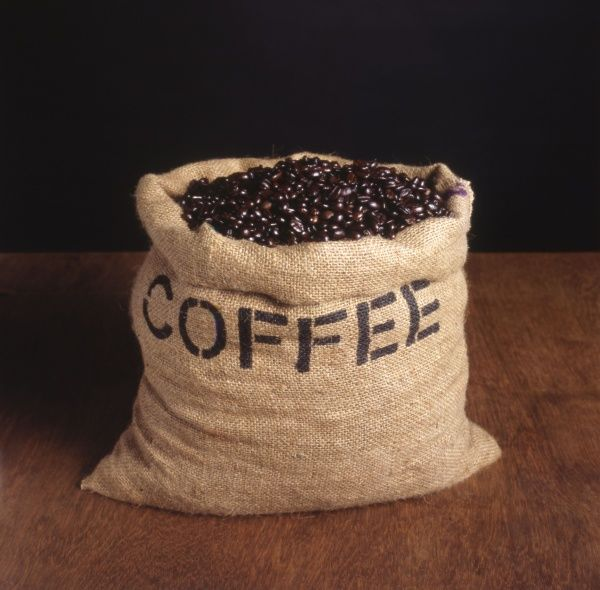 A sack of coffee beans. Date: 1980