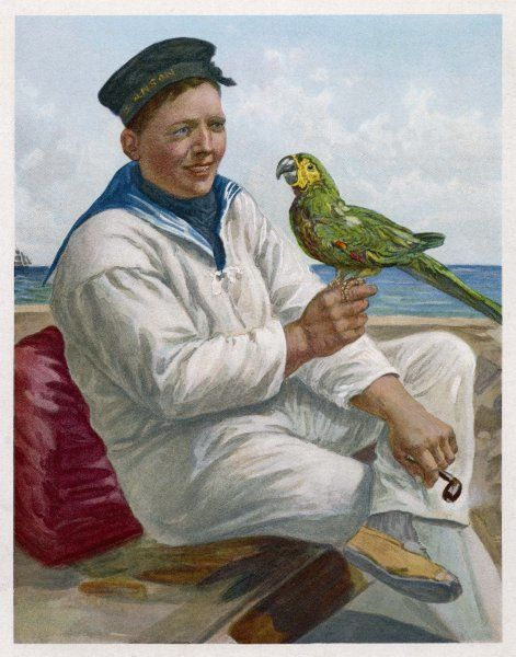 Sailors have a tendency to bring home parrots as souvenirs of their travels in exotic climes : the noise below decks must have been indescribable !