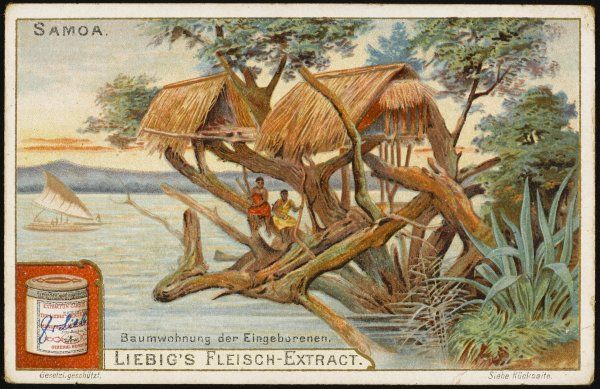 A Samoan tree-house, built over the water, presumably for coolness