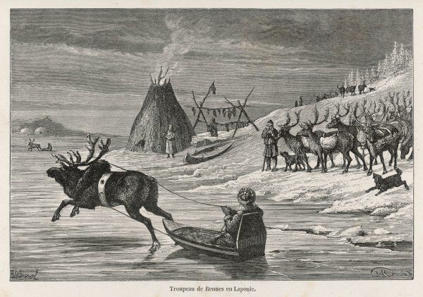 General scene, showing a hut for smoking fish : a reindeer herd, with dogs ; and a reindeer-drawn sledge