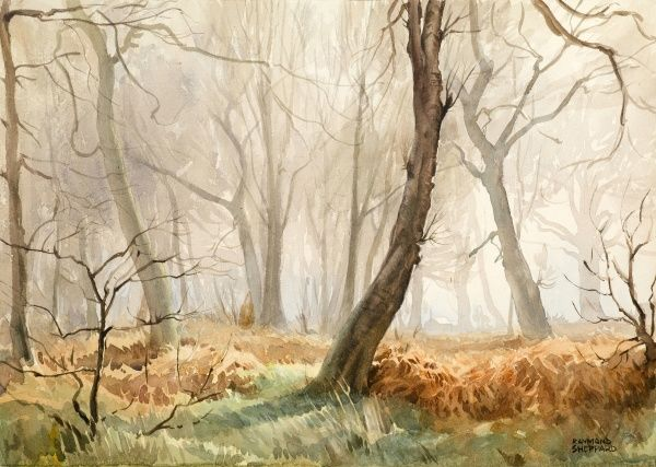 Scene in a misty wood with autumnal colours