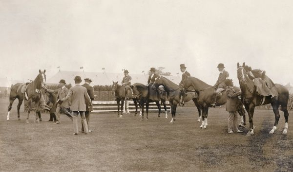 A scene at the Richmond Horse Show in Surrey, with judges examining the horses
